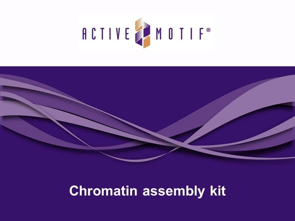 Chromatin assembly kit