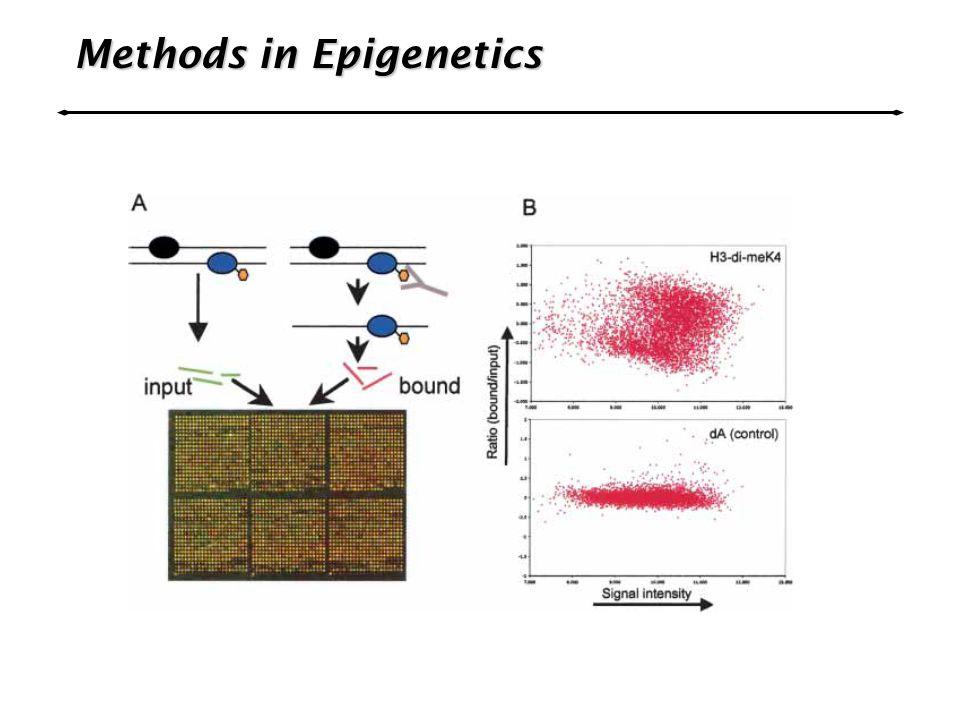 Methods in Epigenetics