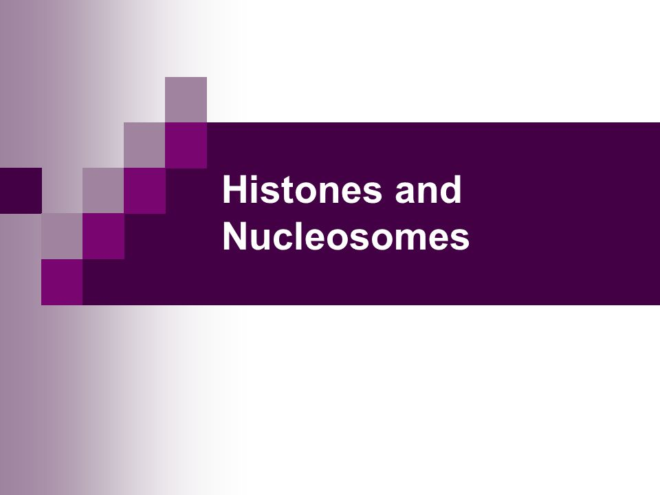 Histones and Nucleosomes