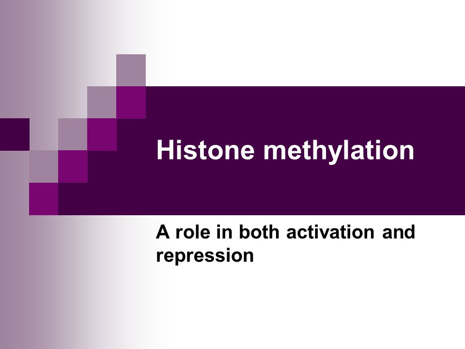 Histone methylation A role in both activation and repression