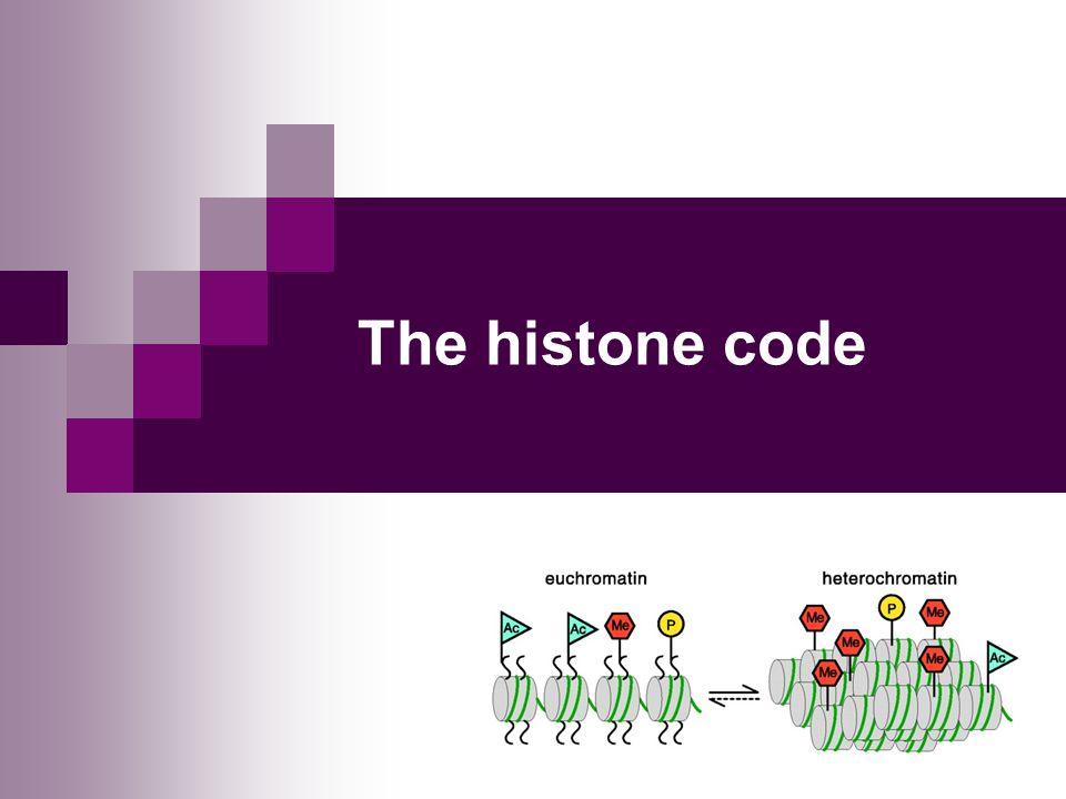 The histone code