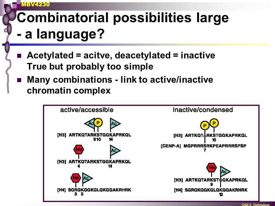 MBV4230 Odd S. Gabrielsen Combinatorial possibilities large - a language? Acetylated = acitve, deacetylated = inactive True but probably too simple Ma