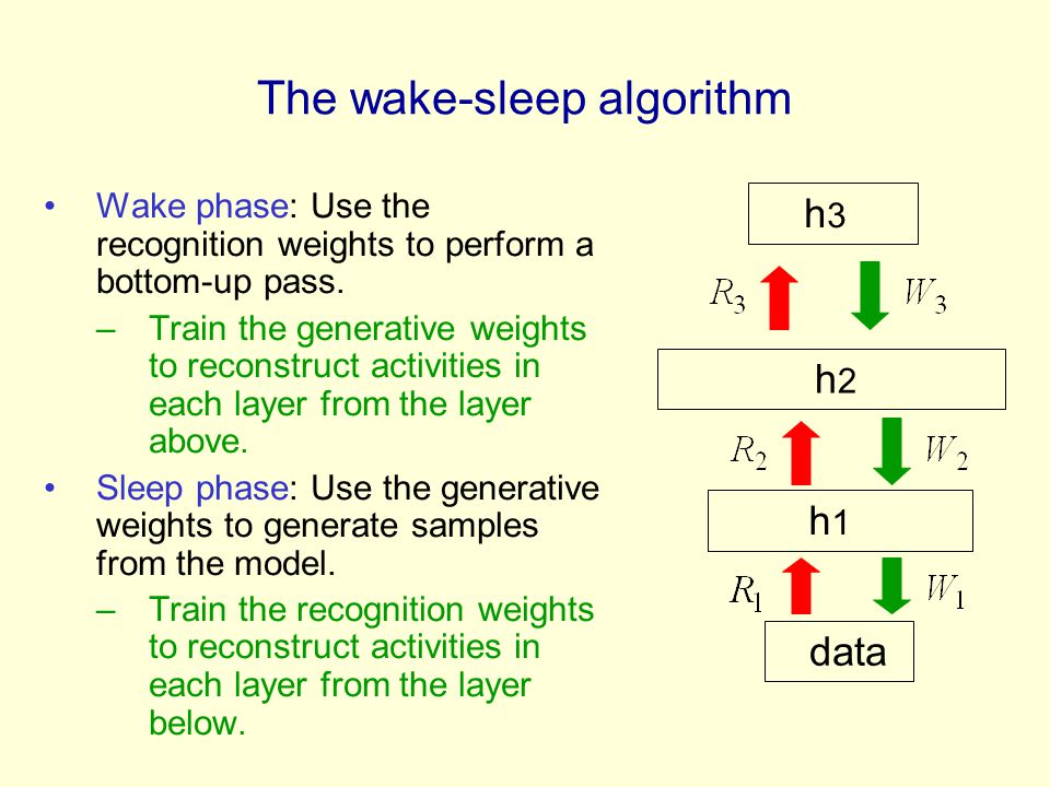 The wake-sleep algorithm Wake phase: Use the recognition weights to perform a bottom-up pass.