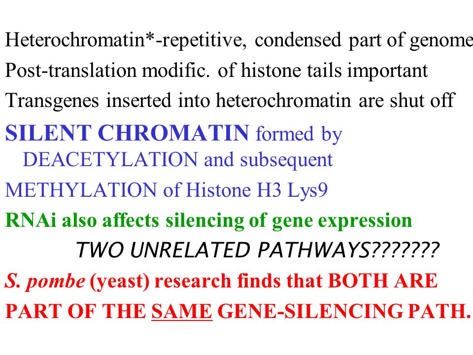 Heterochromatin*-repetitive, condensed part of genome Post-translation modific.