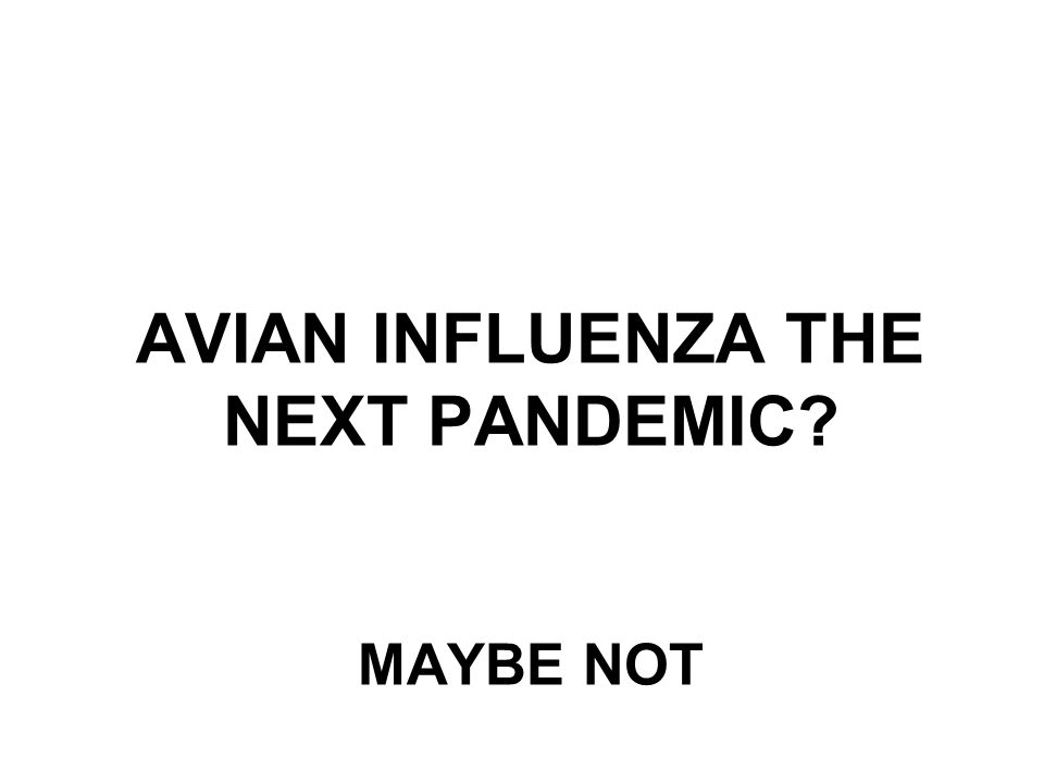 AVIAN INFLUENZA THE NEXT PANDEMIC MAYBE NOT