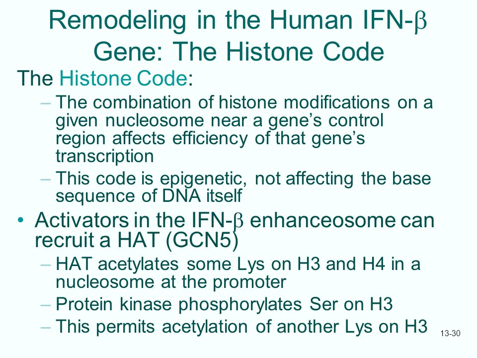 13-30 Remodeling in the Human IFN-  Gene: The Histone Code The Histone Code: –The combination of histone modifications on a given nucleosome near a g