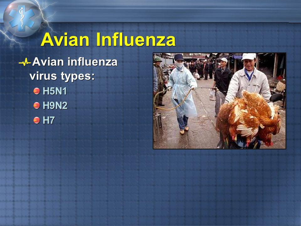 Avian Influenza Avian influenza virus types: H5N1 H9N2 H7 Avian influenza virus types: H5N1 H9N2 H7