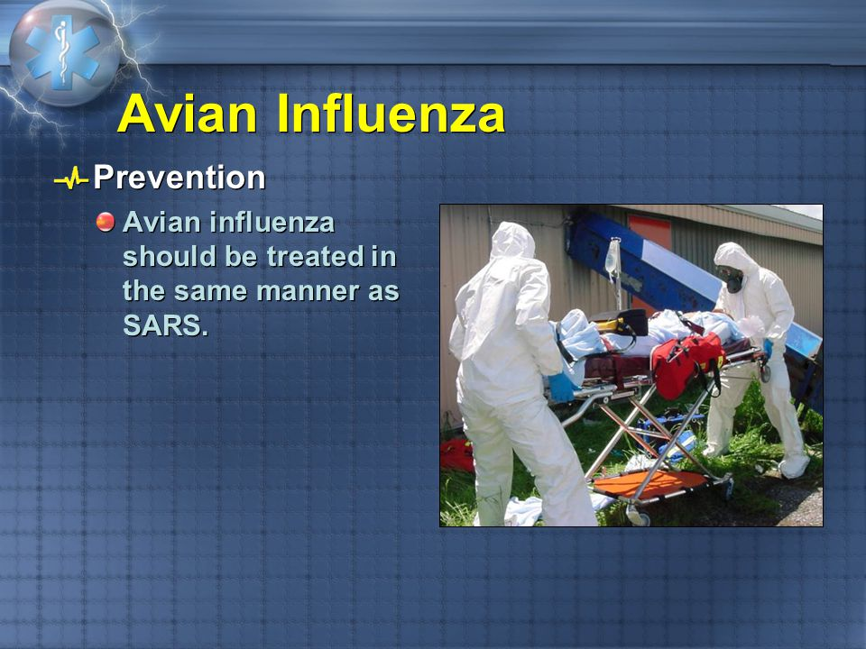 Avian Influenza Prevention Avian influenza should be treated in the same manner as SARS. Prevention Avian influenza should be treated in the same mann