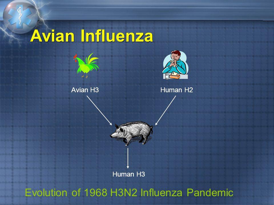 Avian Influenza Avian H3Human H2 Human H3 Evolution of 1968 H3N2 Influenza Pandemic