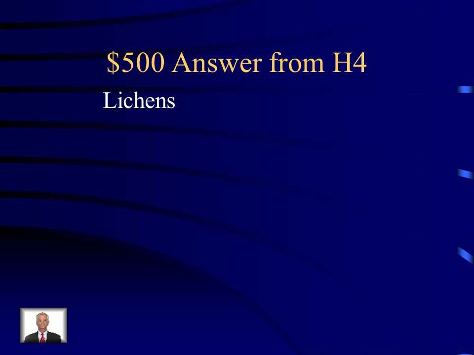 $500 Question from H4 Organisms which establish themselves on rocks and secrete an acid