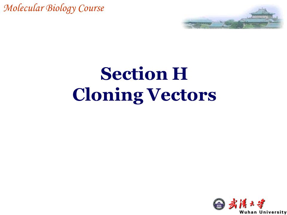 Section H Cloning Vectors Molecular Biology Course