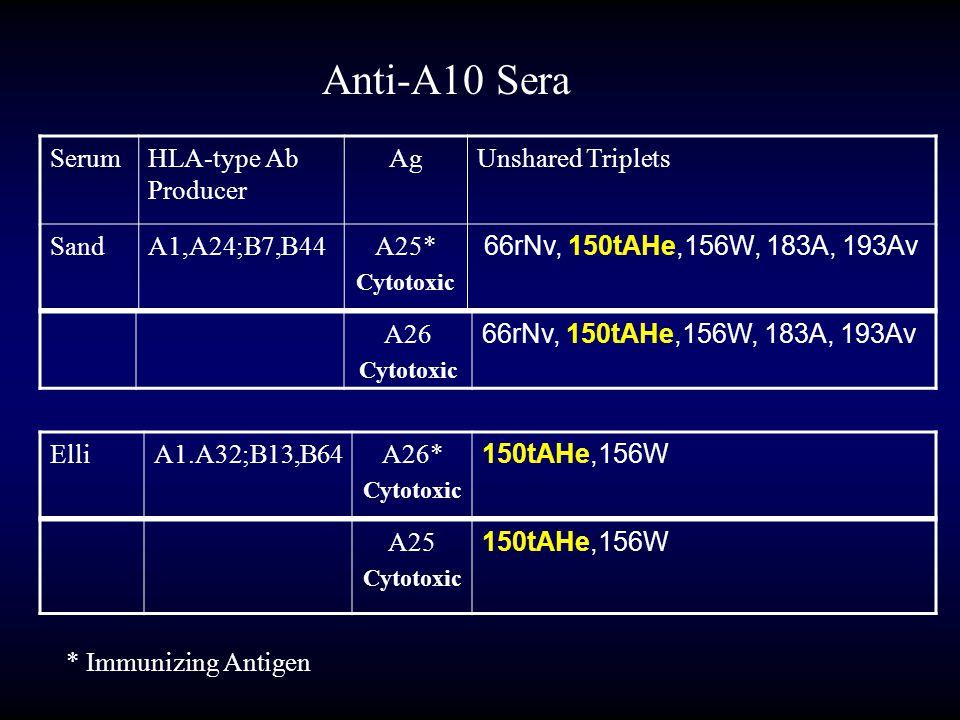Anti-A10 Sera SerumHLA-type Ab Producer AgUnshared Triplets SandA1,A24;B7,B44A25* Cytotoxic 66rNv, 150tAHe,156W, 183A, 193Av A26 Cytotoxic 66rNv, 150t
