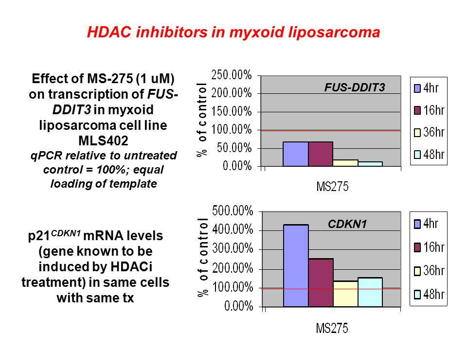Effect of MS-275 (1 uM) on transcription of FUS- DDIT3 in myxoid liposarcoma cell line MLS402 qPCR relative to untreated control = 100%; equal loading