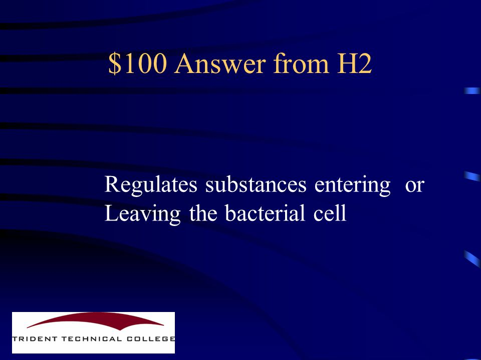 $100 Question from H2 What is the bacterial plasma Membrane function