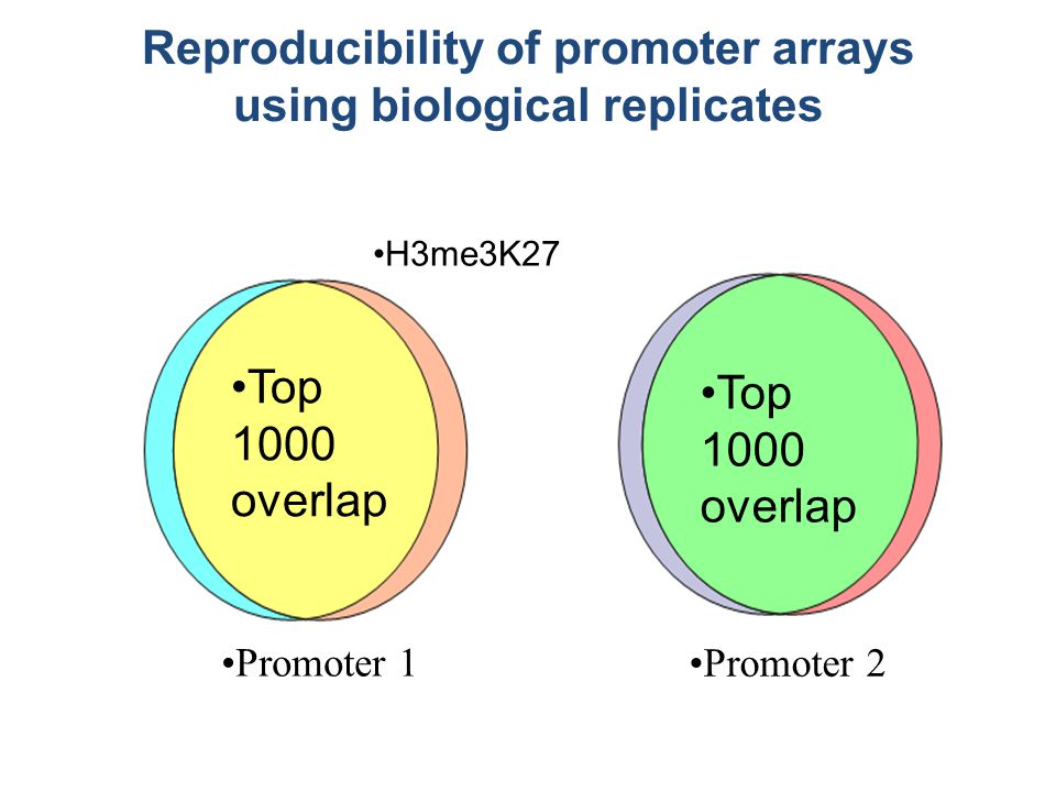 Promoter 1 Promoter 2 Reproducibility of promoter arrays using biological replicates Top 1000 overlap H3me3K27
