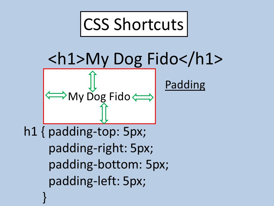 CSS Shortcuts My Dog Fido Padding h1 { padding-top: 5px; padding-right: 5px; padding-bottom: 5px; padding-left: 5px; } h1 { border: 5px dotted red; } My Dog Fido