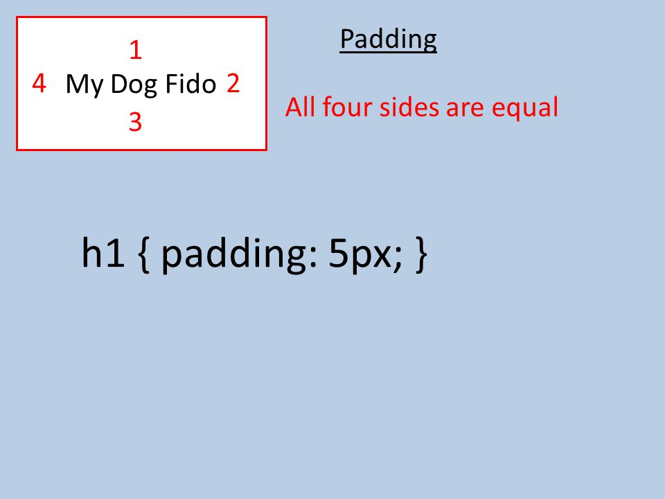 Padding h1 { padding: 5px; } All four sides are equal My Dog Fido 2 1 4 3