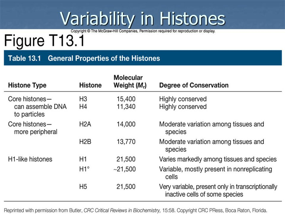 WEAVER: TABLE 13.1 Variability in Histones