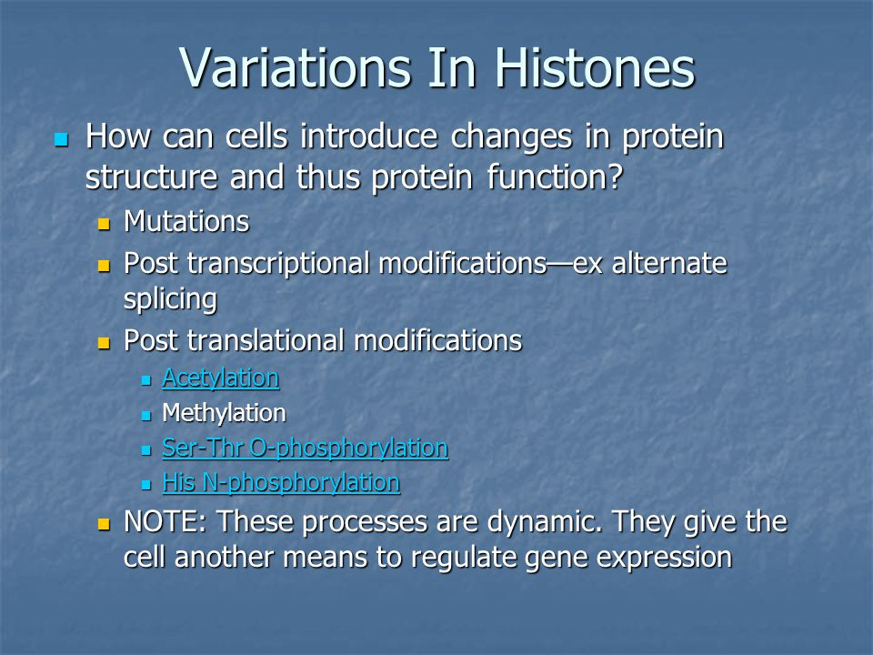 Variations In Histones How can cells introduce changes in protein structure and thus protein function.