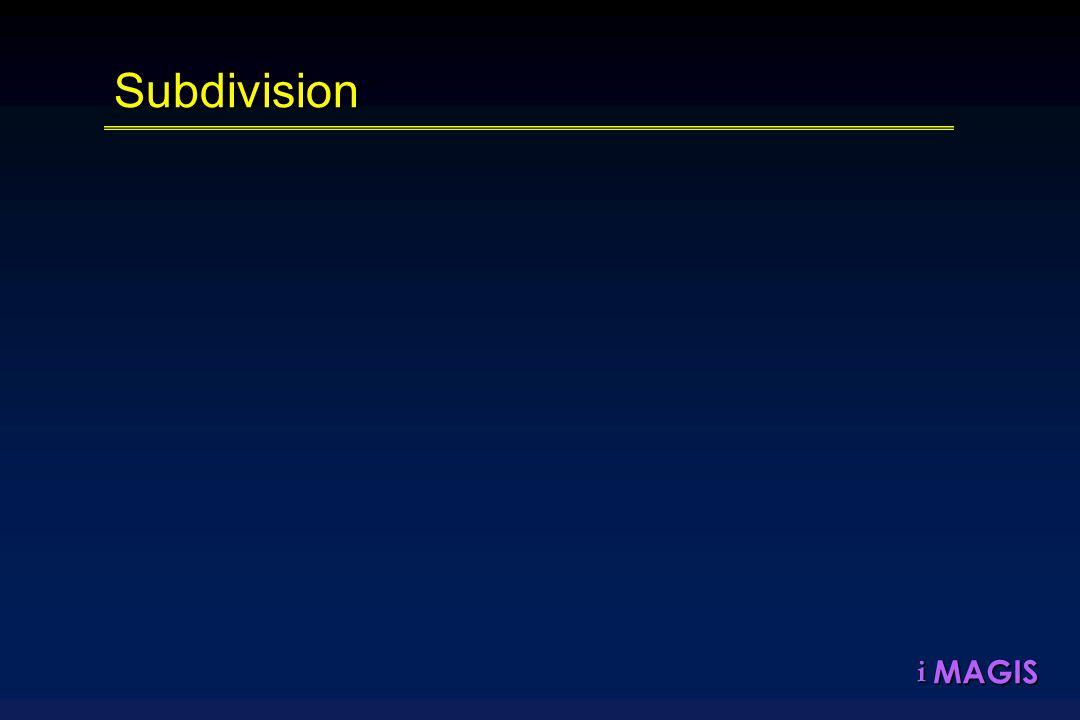 MAGISiSubdivision