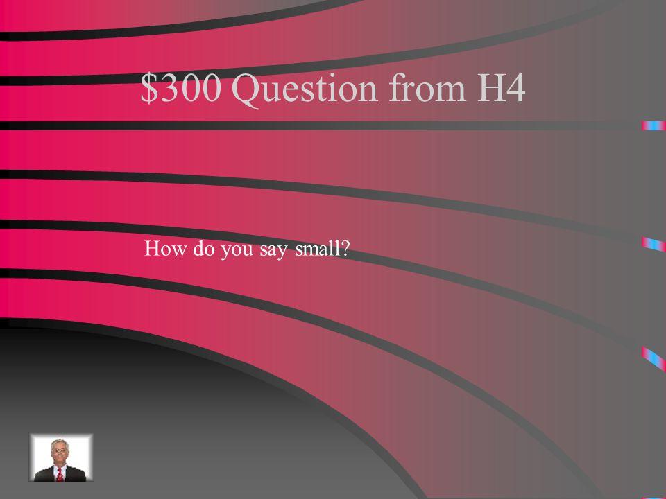 $200 Answer from H4 Tiene pelo rubio