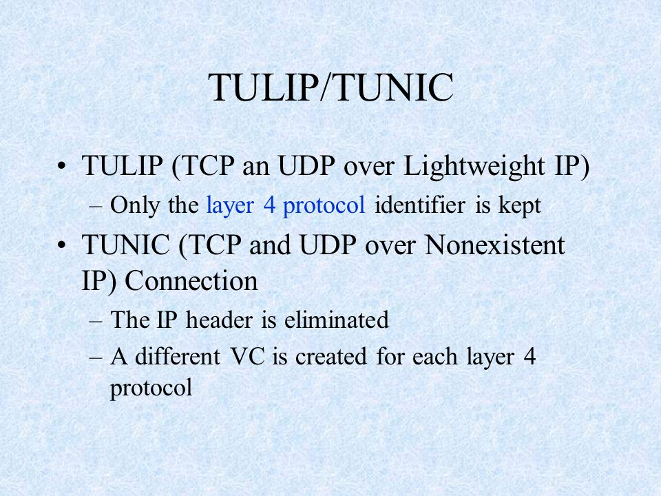 TULIP/TUNIC TULIP (TCP an UDP over Lightweight IP) –Only the layer 4 protocol identifier is kept TUNIC (TCP and UDP over Nonexistent IP) Connection –The IP header is eliminated –A different VC is created for each layer 4 protocol
