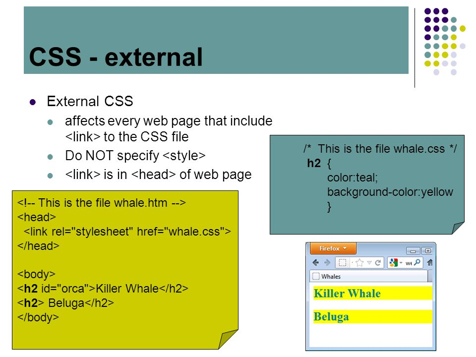 CSS External CSS affects every web page that include to the CSS file Do NOT specify is in of web page CSS - external /* This is the file whale.css */
