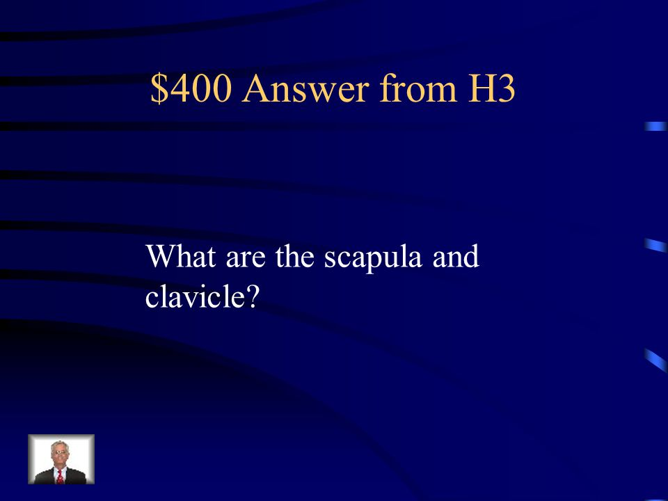 $400 Question from H3 These make up the shoulder girdle.