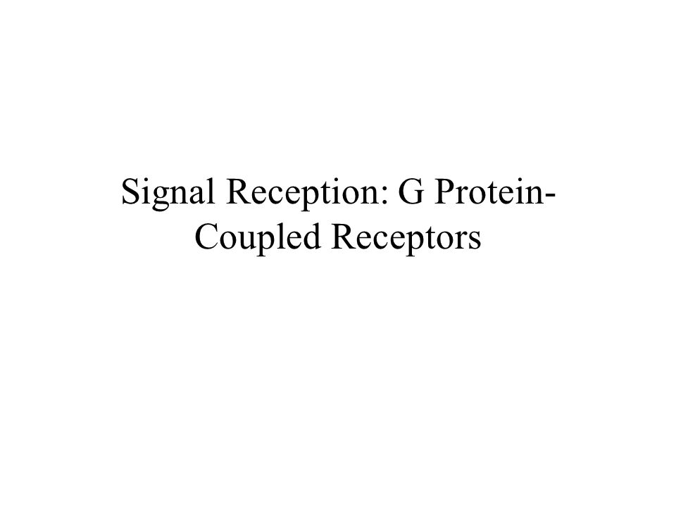 Signal Reception: G Protein- Coupled Receptors