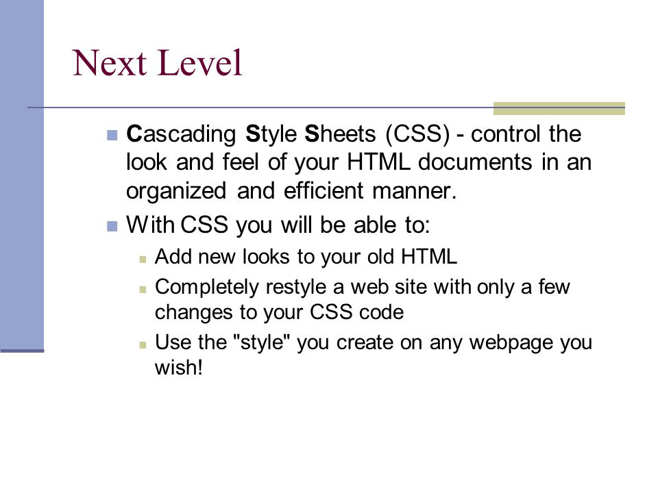 Next Level Cascading Style Sheets (CSS) - control the look and feel of your HTML documents in an organized and efficient manner.