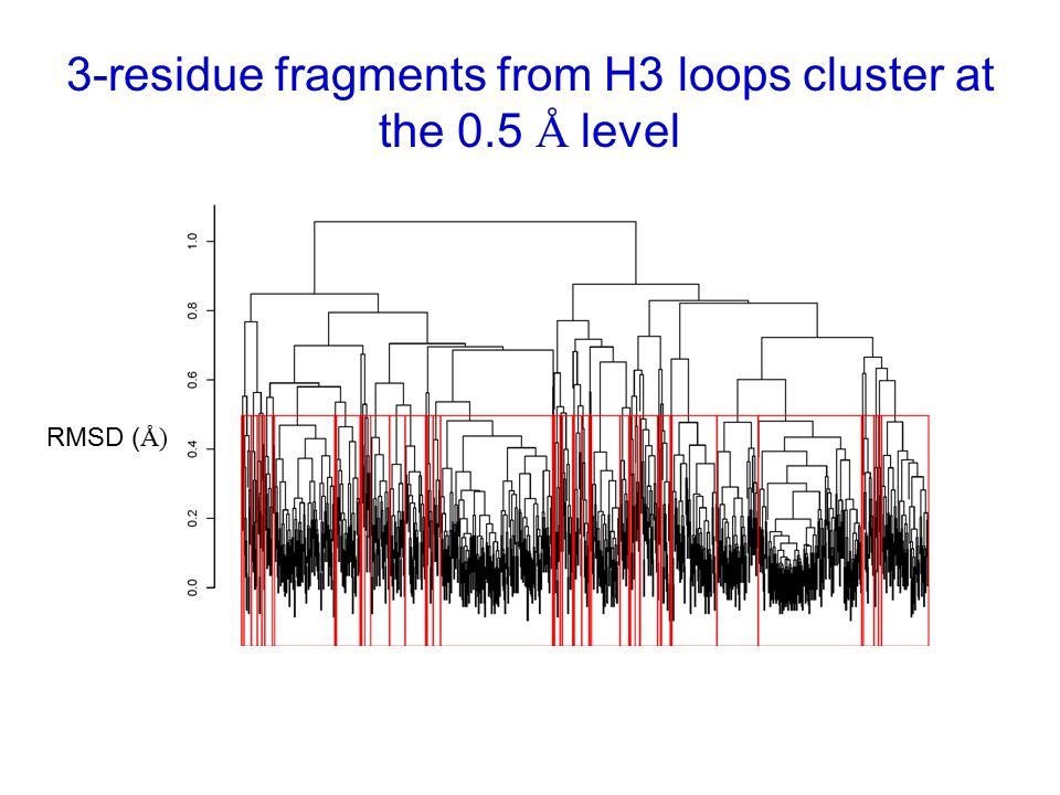 3-residue fragments from H3 loops cluster at the 0.5 Å level RMSD ( Å)