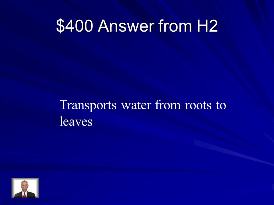 $400 Answer from H2 Transports water from roots to leaves
