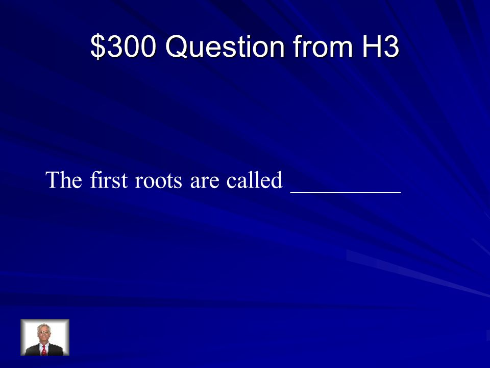 $300 Question from H3 The first roots are called _________