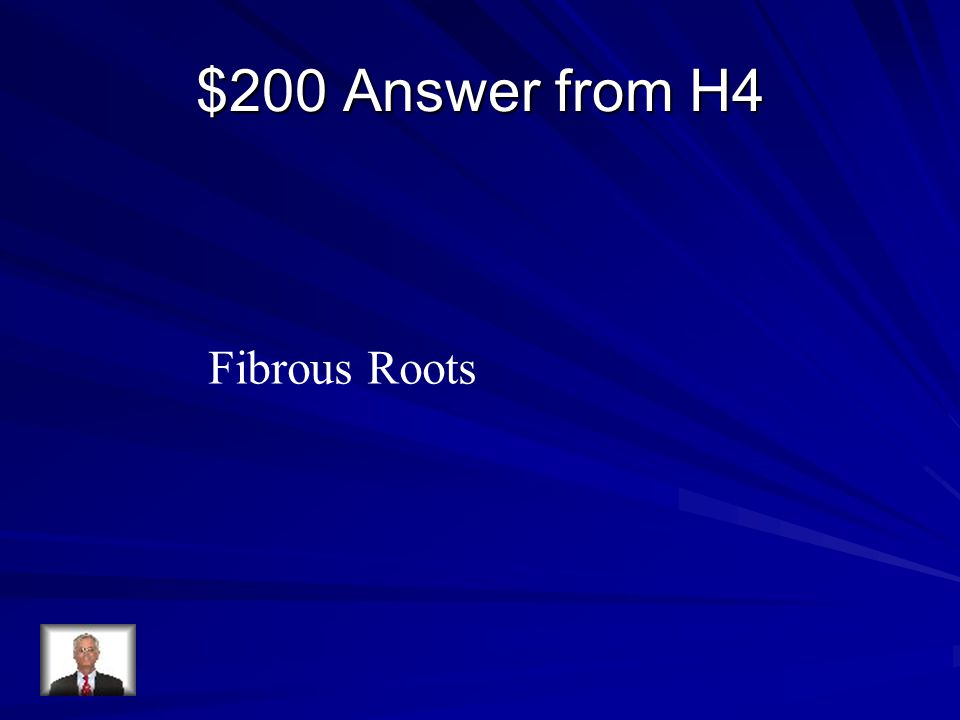 $200 Answer from H4 Fibrous Roots