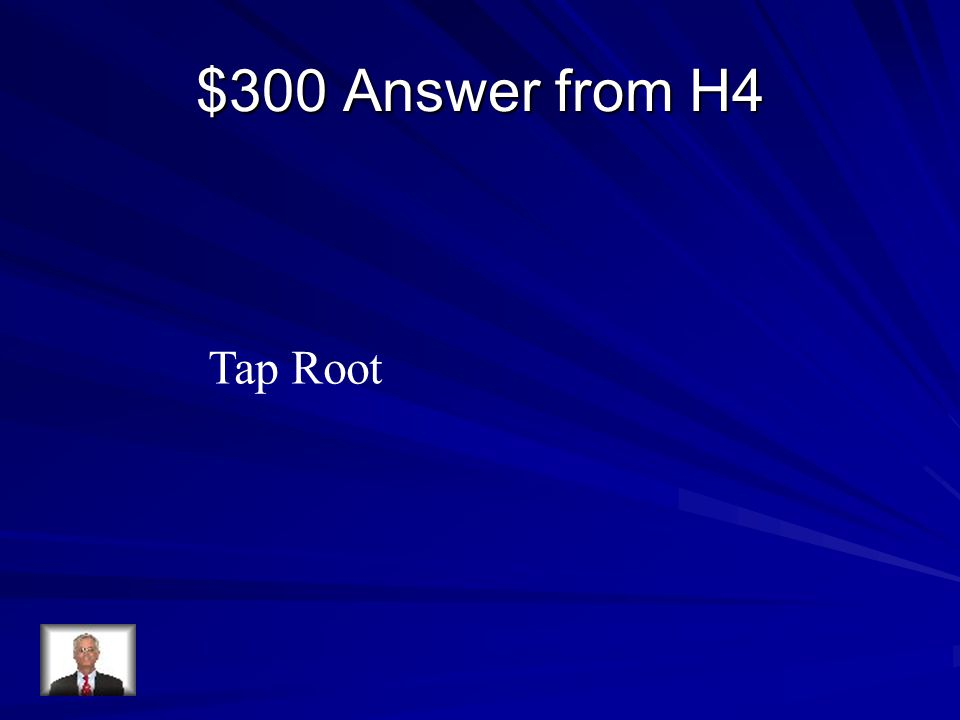 $300 Answer from H4 Tap Root