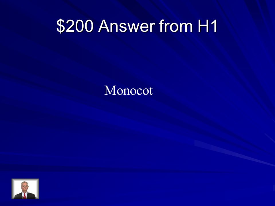 $200 Answer from H1 Monocot