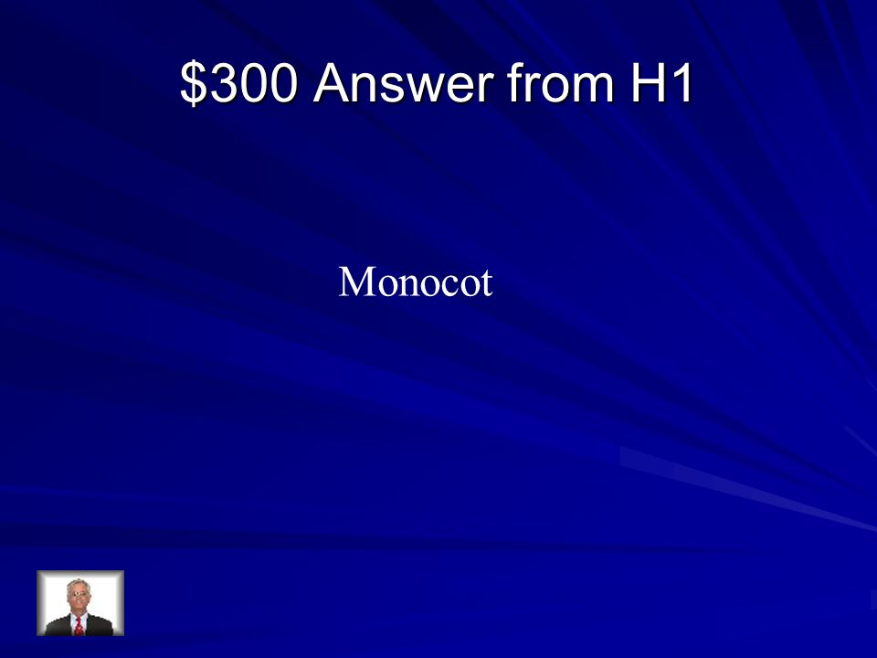 $300 Answer from H1 Monocot