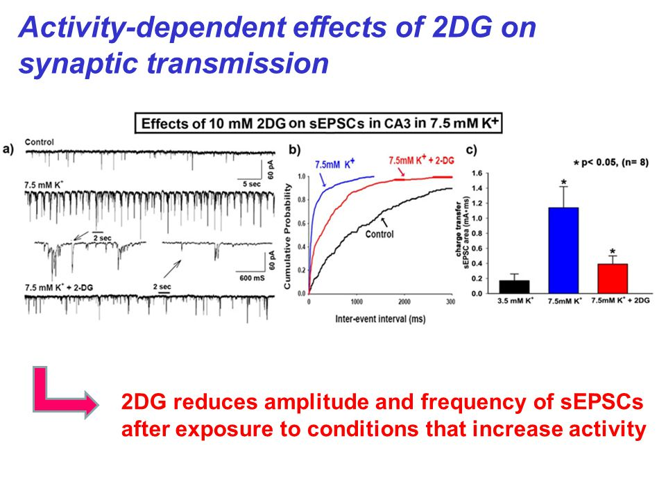2DG reduces amplitude and frequency of sEPSCs after exposure to conditions that increase activity Activity-dependent effects of 2DG on synaptic transmission