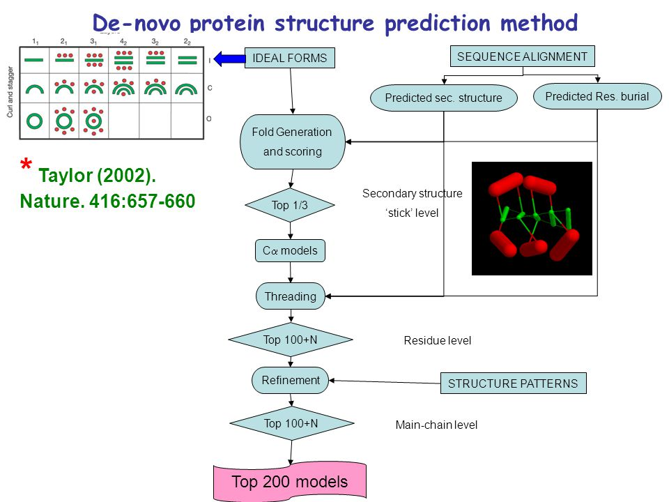 Top 1/3 C  models Threading Fold Generation and scoring Top 100+N Refinement Top 100+N IDEAL FORMS SEQUENCE ALIGNMENT Predicted sec. structure Predic