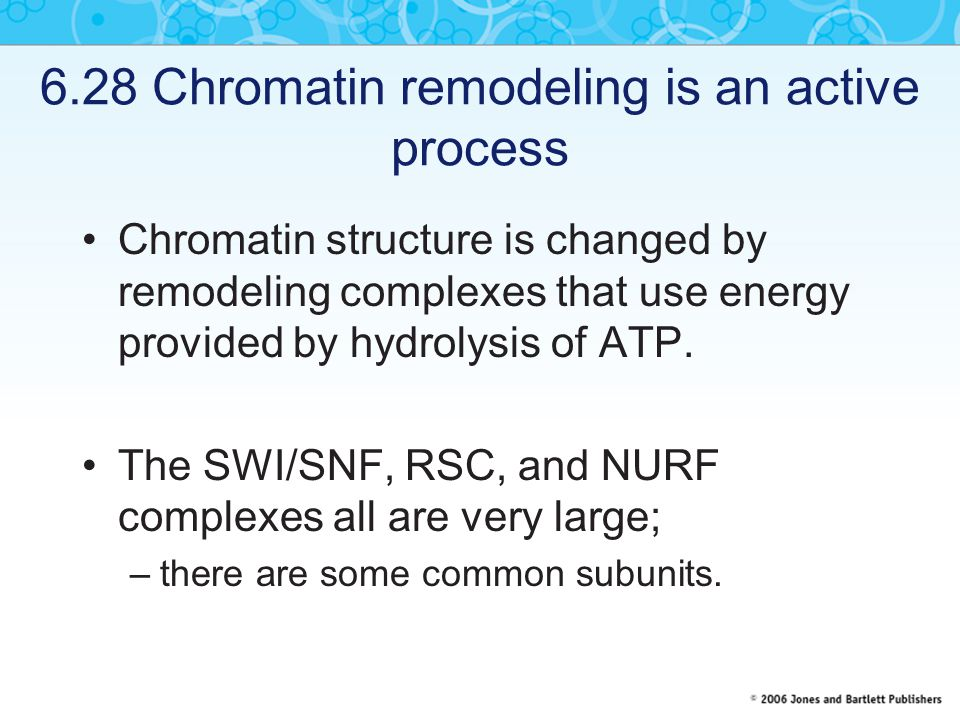 6.28 Chromatin remodeling is an active process Chromatin structure is changed by remodeling complexes that use energy provided by hydrolysis of ATP.