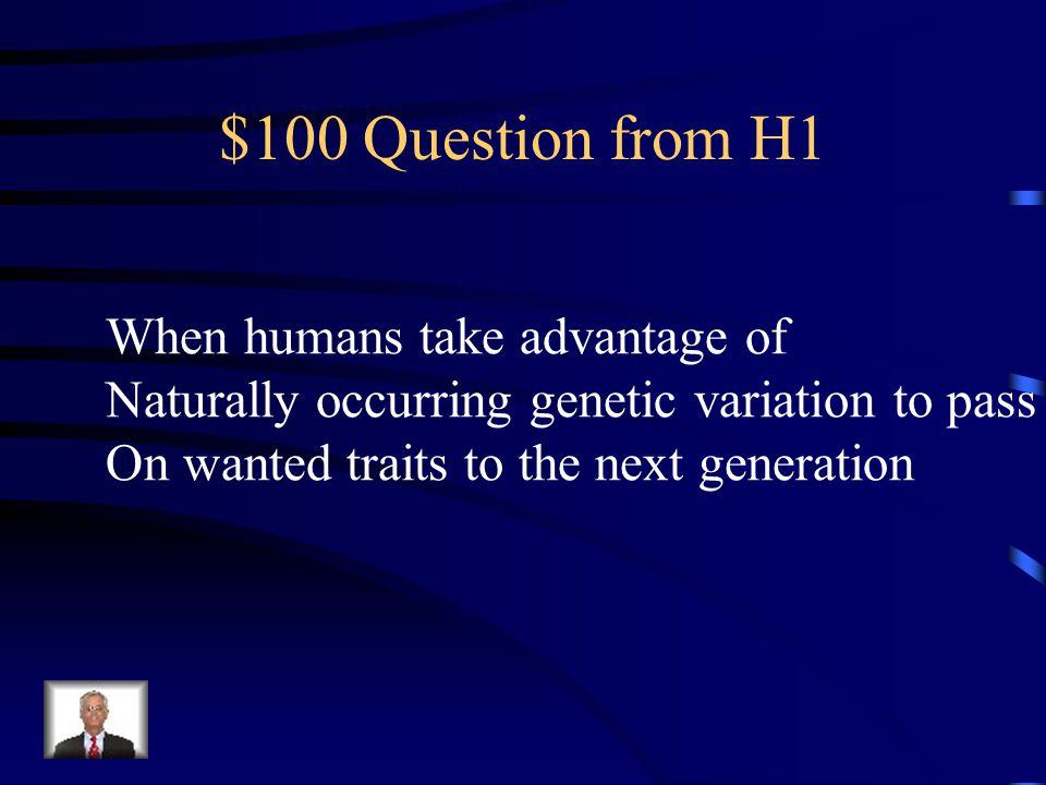 Jeopardy ABCD E Q $100 Q $200 Q $300 Q $400 Q $500 Q $100 Q $200 Q $300 Q $400 Q $500 Final Jeopardy