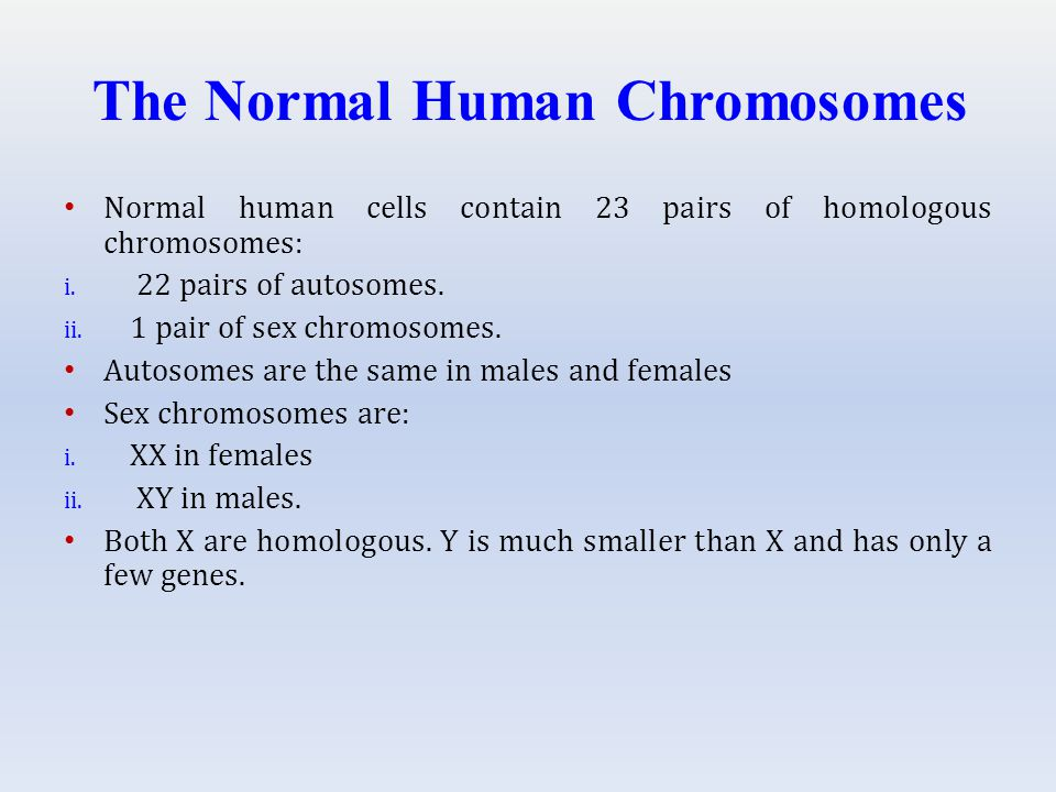 The Normal Human Chromosomes Normal human cells contain 23 pairs of homologous chromosomes: i.