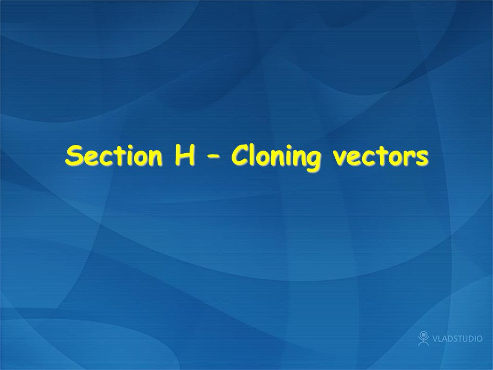 H1 Design of plasmid vectors Ligation products, Twin antibiotic resistance, Blue-white screening, Multiple cloning sites, Transcription of cloned inserts, Expression vectorsLigation productsTwin antibiotic resistanceBlue-white screeningMultiple cloning sitesTranscription of cloned insertsExpression vectors H2 Bacteriophage vectors Bacteriophage λ, λReplacement vectors, Packaging and infection, Formation of plaques, λ Lysogens, M13 phage vectors, Cloning in M13, Hybrid plasmid-M13 vectorsBacteriophage λλReplacement vectorsPackaging and infectionFormation of plaques λ LysogensM13 phage vectorsCloning in M13Hybrid plasmid-M13 vectors H3 Cosmids, YACs and BACs Cloning large DNA fragments, Cosmid vectors, YAC vectors, Selection in S.