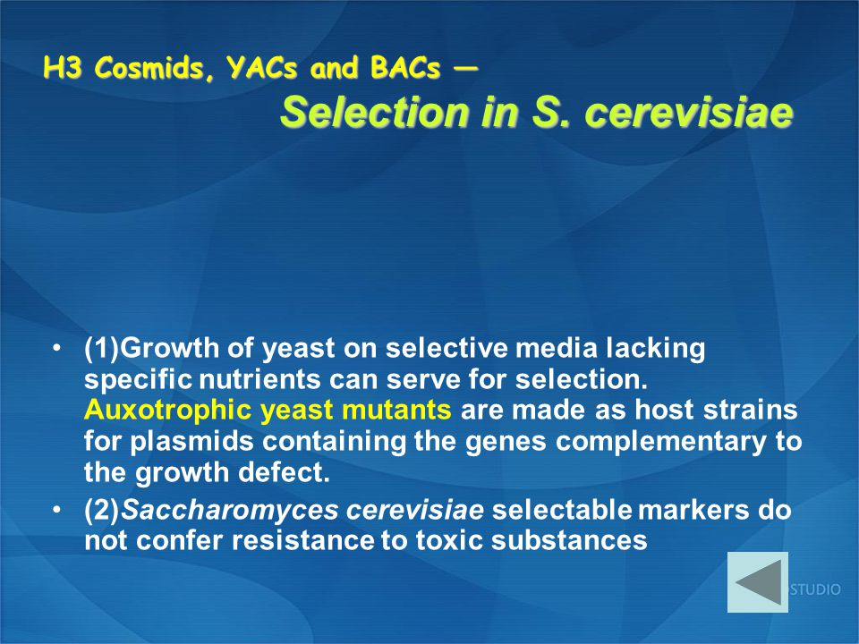 H3 Cosmids, YACs and BACs — Selection in S. cerevisiae (1)Growth of yeast on selective media lacking specific nutrients can serve for selection. Auxot