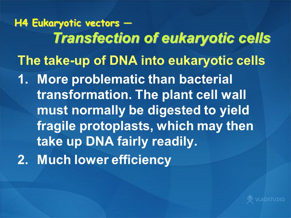 H4 Eukaryotic vectors — Transfection of eukaryotic cells The take-up of DNA into eukaryotic cells 1.More problematic than bacterial transformation. Th
