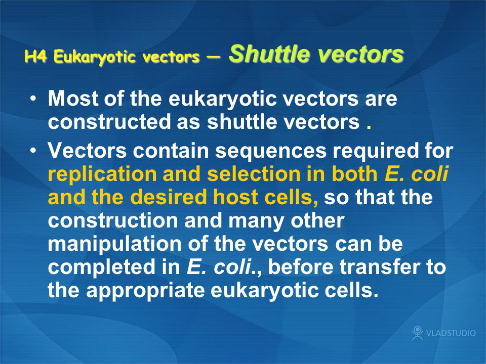 H4 Eukaryotic vectors — Shuttle vectors Most of the eukaryotic vectors are constructed as shuttle vectors. Vectors contain sequences required for repl