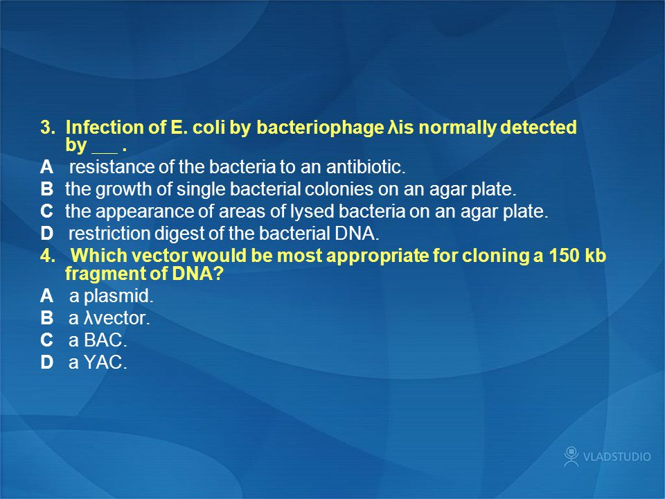 3. Infection of E. coli by bacteriophage λis normally detected by. A resistance of the bacteria to an antibiotic. B the growth of single bacterial col