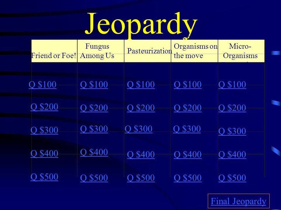 Jeopardy Friend or Foe.