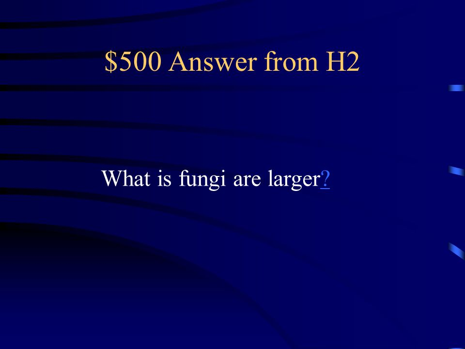 $500 Question from H2 Description of the size of fungi compared to the size of bacteria.