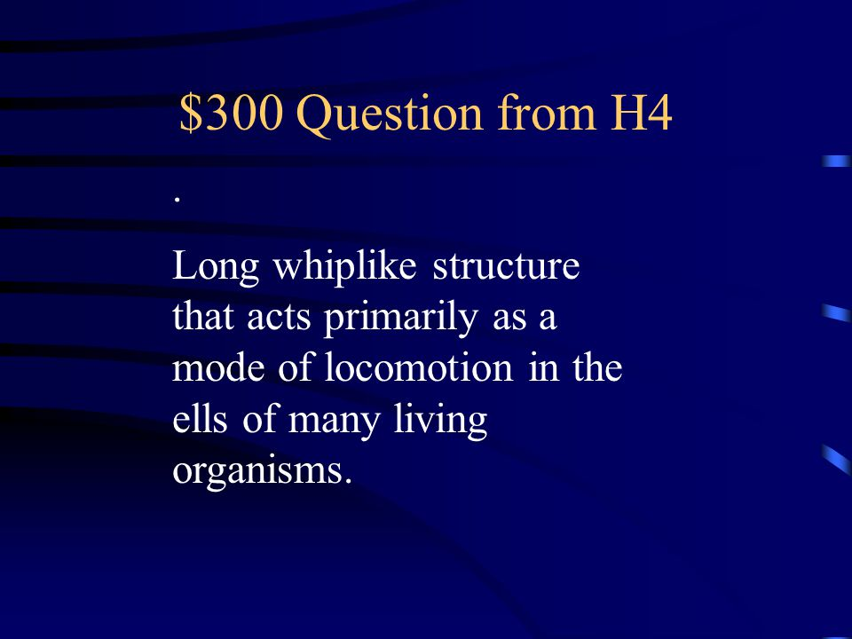 $200 Answer from H4 What is cilia